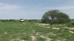 Car driving wet fileld land Arfica safari Stock Footage