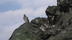 A Pigeon sitting on the body of an old bronze statue and looking around Stock Footage