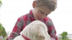 Child stroking and hugging his dog. Boy playing with dog in the park. Stock Footage