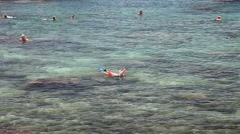 Sharks Cove snorkeling Stock Footage