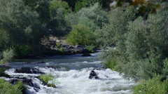 Scenic shot of white water rapids, Rouge River, Oregon, USA Stock Footage