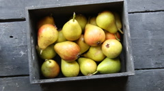 Healthy Organic Pears Stock Footage