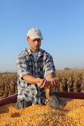 Agriculture, corn harvest, farmer and crop Kuvituskuvat