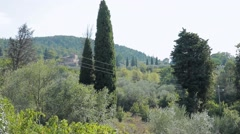 Tuscan hills, a vineyard in the village of Chianti region Stock Footage