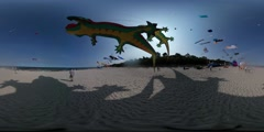 360Vr Video Crocodile Shapes Kites Are Waving Colorful Toys People Fly the Stock Footage