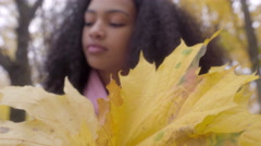 Beautiful black teen collecting yellow maple leaves in bouquet Stock Footage
