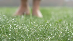 Masculine feet go barefoot to the soft grass with morning dew, background Stock Footage