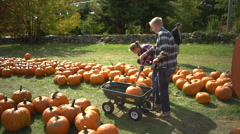 Young family chooses a pumpkin Stock Footage