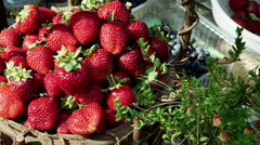 Still life. Juicy bright red strawberries in the basket. Stock Footage