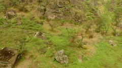 PERU: National reserve Lachay Hills Stock Footage