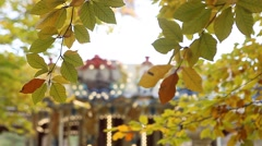 Yellow autumn leaves with merry-go-round in background Stock Footage