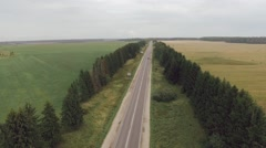 Vehicles traveling distance by road between the trees Stock Footage