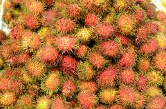 Fresh rambutan fruit symmetrically stacked Stock Photos