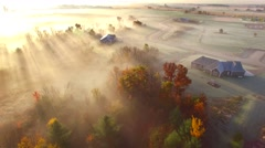 Surreal foggy rural landscape at dawn with Autumn colors and sunbeams Stock Footage