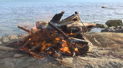 Spring fire on the beach Stock Footage