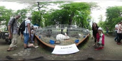 360Vr Video People at the Animal Exhibition Opole Zoo Small Children Families Stock Footage
