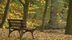 Man Comes by Bicycle Riding by Alley Autumn Day Golden Trees Park Backpacker in Stock Footage