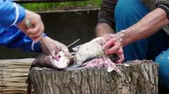 Fishermen cleaning and cutting fresh fish Stock Footage