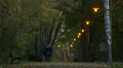 Couple is Walking in Autumn Evening Lamps Glow Benches Along Footpath Park Stock Footage