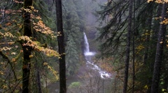 Miller Creek Falls, Mount Saint Helens National Volcanic Monument, Washington Stock Footage