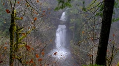 Curly Creek Falls, Mount Saint Helens National Volcanic Monument, Washington Stock Footage