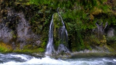 Needle Falls, Willamette National Forest, Oregon Stock Footage
