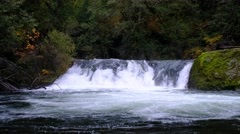 Salmon Creek Falls, Willamette National Forest, Oregon Stock Footage