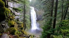 Salt Creek Falls, Willamette National Forest, Oregon Stock Footage