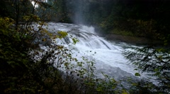 Middle Lewis River Falls, Gifford Pinchot National Forest, Washington Stock Footage