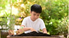 Young Thai boy planting little seedling on the black soil in the garden. Stock Footage