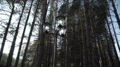 Street lamp standing in the woods Stock Footage
