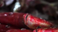 Cut red snapper's heads on counter. Closeup. Jimbaran Fish Market. Bali Stock Footage