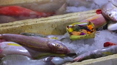 Gifts for spirits on counter with ocean fishes with ice. Jimbaran Fish Market Stock Footage