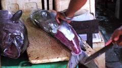 Man cutting fresh-caught fish Mahi Mahi. Fish preparation. Tuna. Jimbaran Fish Stock Footage