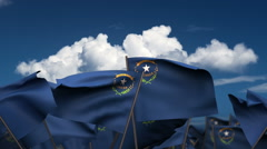Waving Nevada State Flags Stock Footage