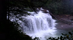 Lower Lewis River Falls, Gifford Pinchot National Forest, Washington Stock Footage