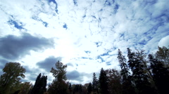 Hurrying clouds moving over forest-timelapse Stock Footage