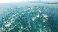 Triathlon Swimmers Stock Footage