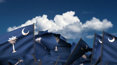 Waving South Carolina State Flags Stock Footage