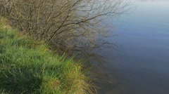 Background grass by resevoir with tree branches reflecting in water Stock Footage