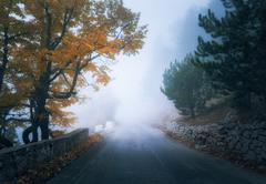 Mystical autumn foggy forest with road. Fall misty woods Stock Photos