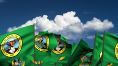 Waving Washington State Flags Stock Footage