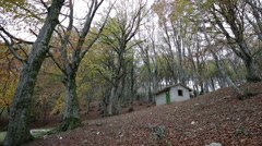 Abandoned house in the woods on the Mount Cucco in Umbria in Italy Stock Footage