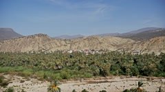 Palm Valley View FHD Stock Footage