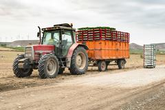 Tractor trailer loaded with seedlings Stock Photos