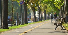 People Taking A Walk And Exercising In Herastrau Park On Autumn Day Stock Footage