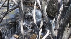Trickling waterfall amongst trees Stock Footage
