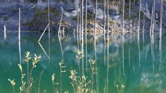 Kaindy Lake Flooded Forest Autumn Reflection 4K Stock Footage