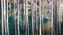 Kaindy Lake Flooded Forest Autumn Fall Kazakhstan 4K Stock Footage