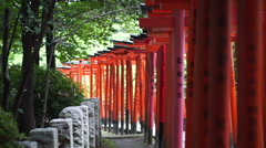 Red tori gate in Japanese shrine temple with green lush tree Stock Footage